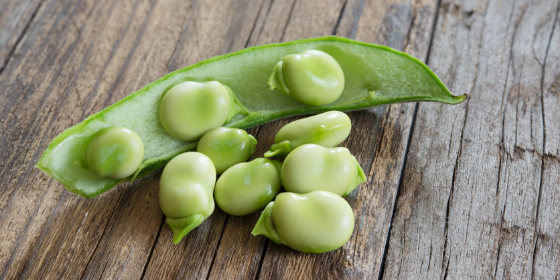 salad broad beans